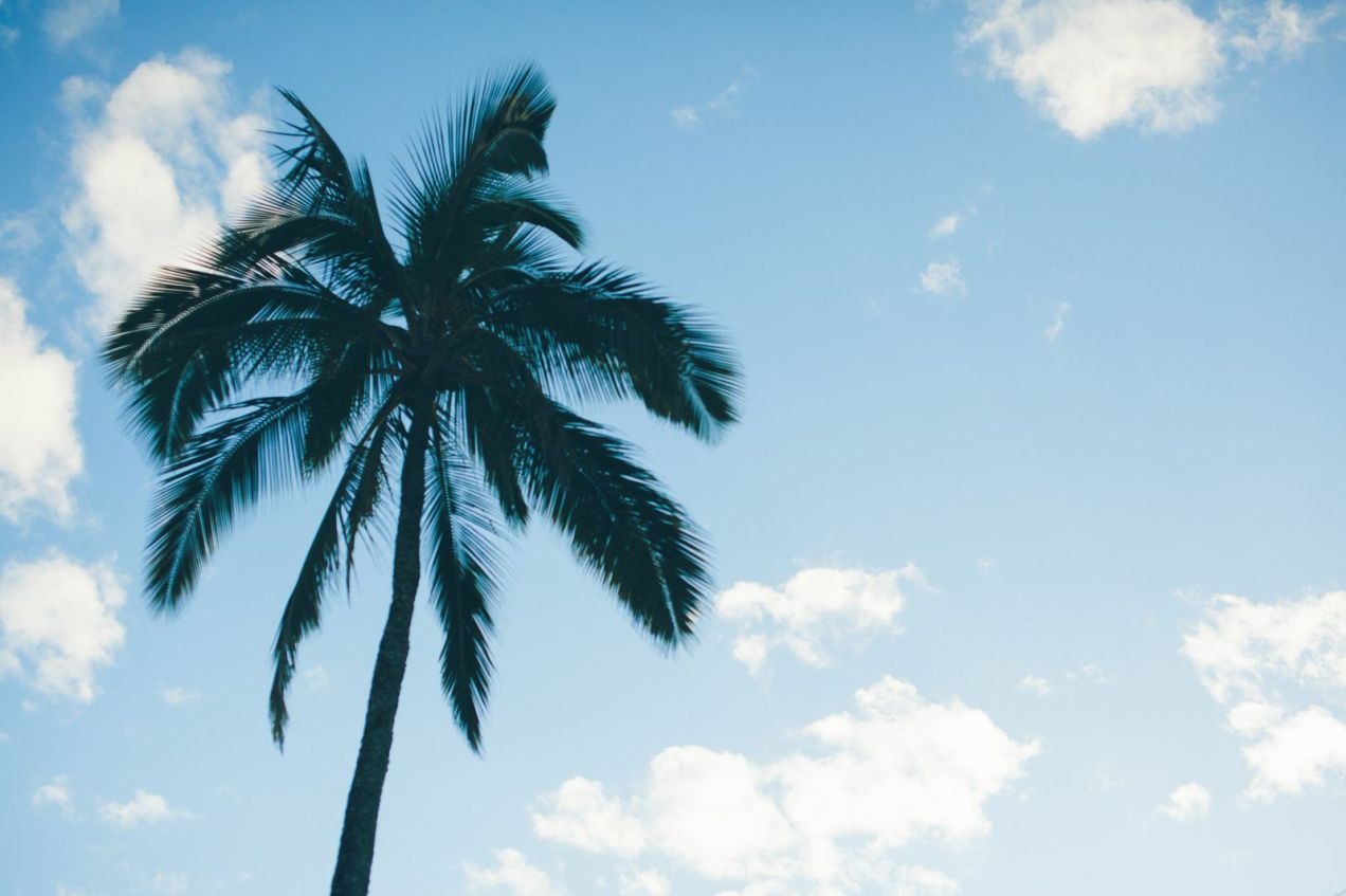 Skyline Kauai