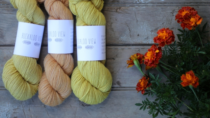 Buckaloo View yarn with marigolds